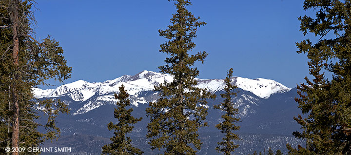 For the record, Wheeler Peak through the trees above Angel Fire