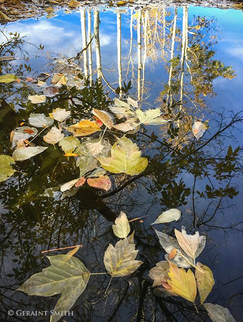 autumn pond el prado new mexico