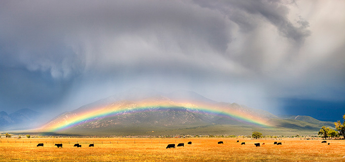 El Prado Rainbow