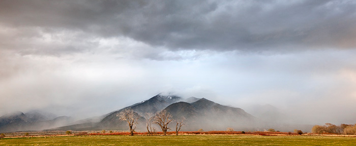 Taos Mountain Mists