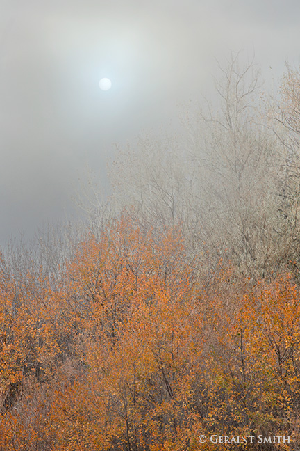 Morning Fog Lifting, Arroyo Hondo, NM