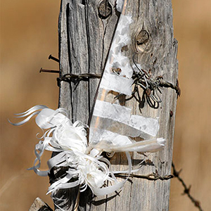 Archive index 2006 photo of the day archive faded flag on a fence post Taos, NM