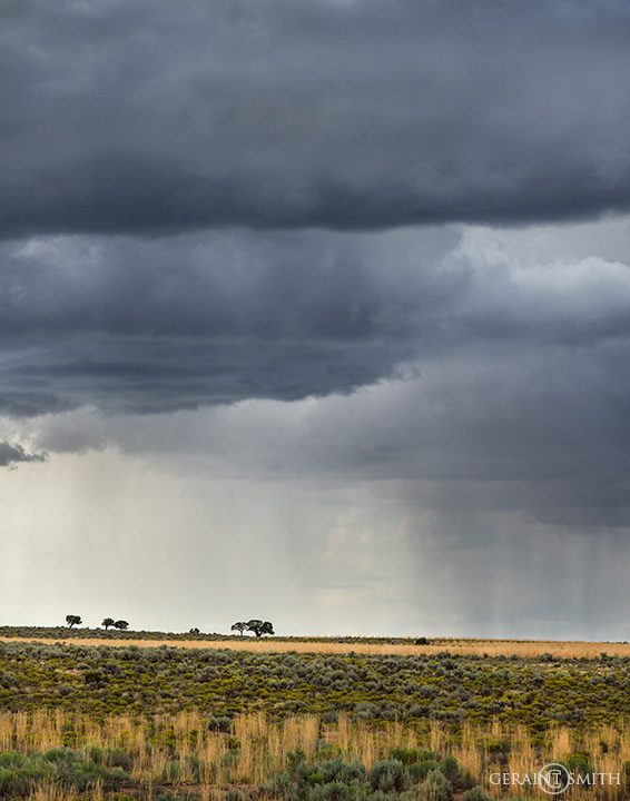 Summer Storms northern New Mexico