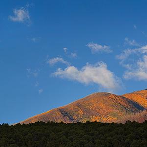 Autumn Colors, Columbine Hondo Wilderness