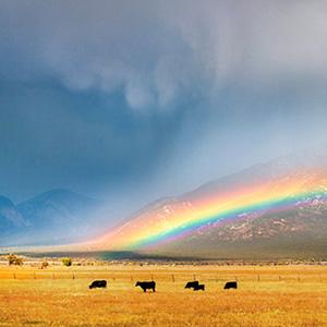 El Prado Taos Mountain Rainbow