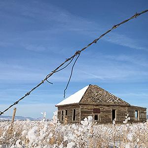 Snow Day Photo Tour, San Luis Valley