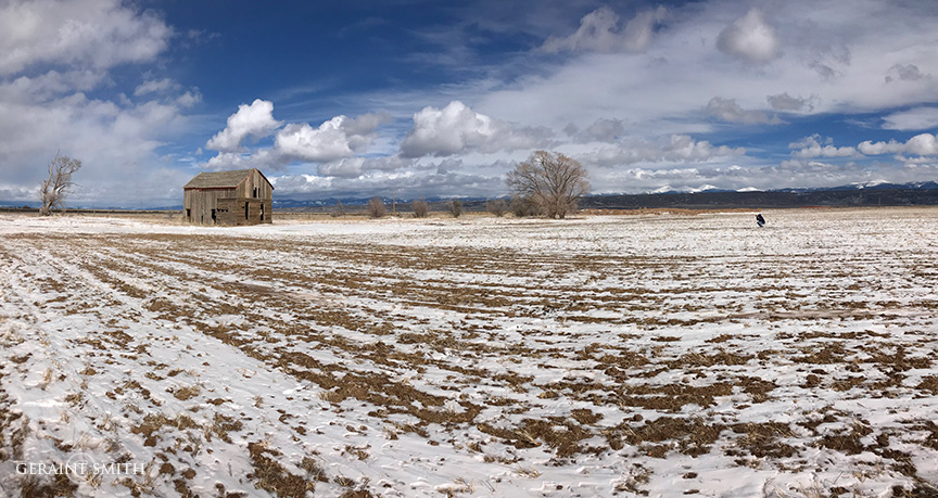 Winter Field, San Luis Valley
