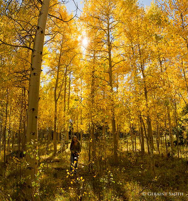 Garcia Park, New Mexico, making images in the aspens.