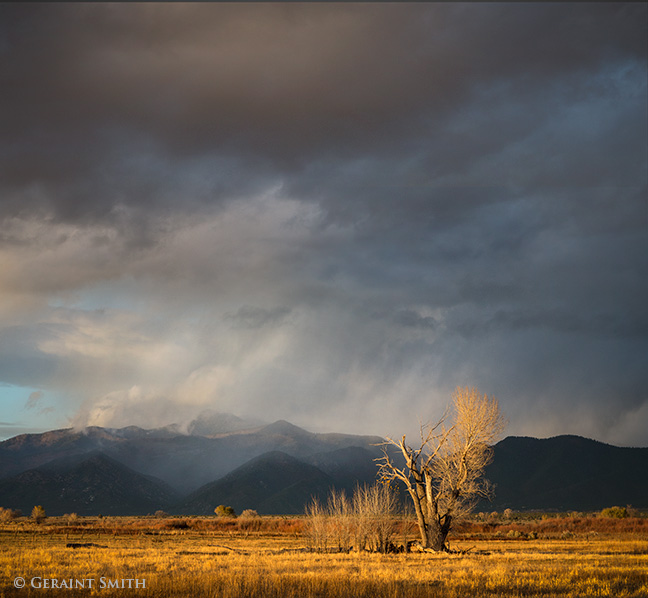 This Evening Light, El Prado, New Mexico