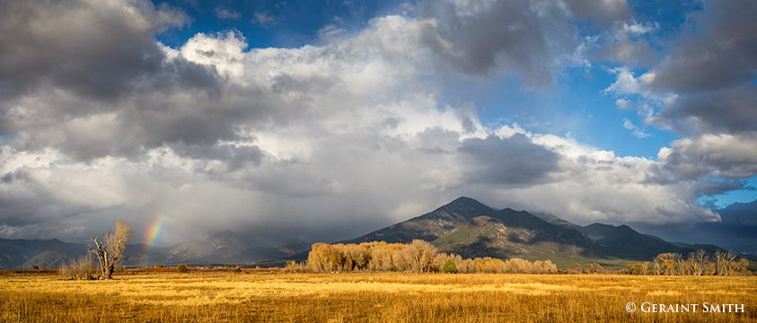 taos_mtn_cottonwood_rainbow_8174_8176-9843687