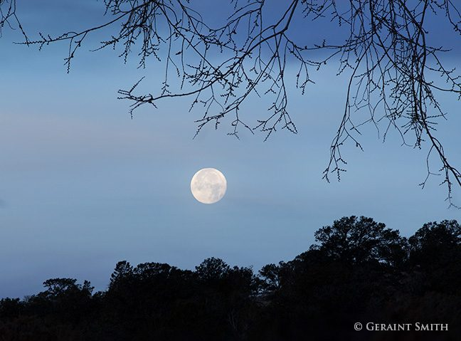 moonset_trees_sc_0507-4040473