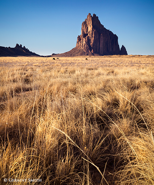 Horses grazing Shiprock New Mexico