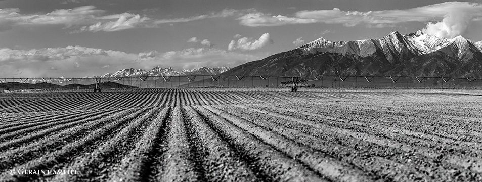 blanca_peak_field_furrows_5124-7804869