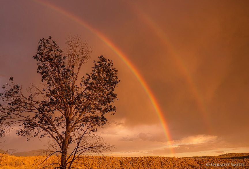 cottonwood_rainbows_5804-5557579