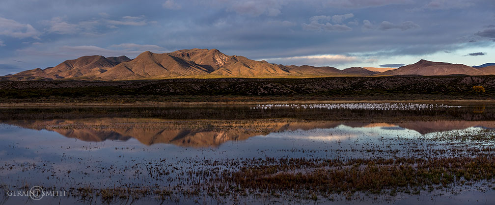 Bosque Marsh, Mountain Dawn