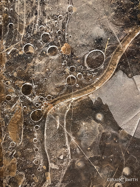 Ice patterns in a puddle