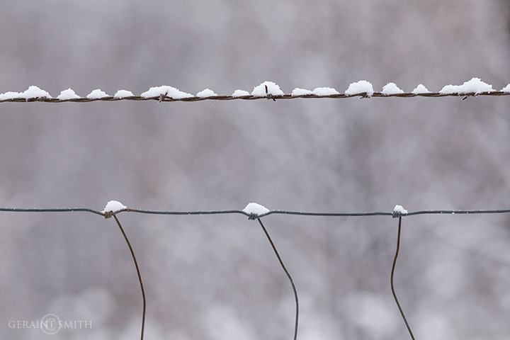 Winter Notes On A Fence