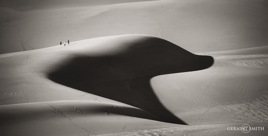 On The Back Of A Sand Dune