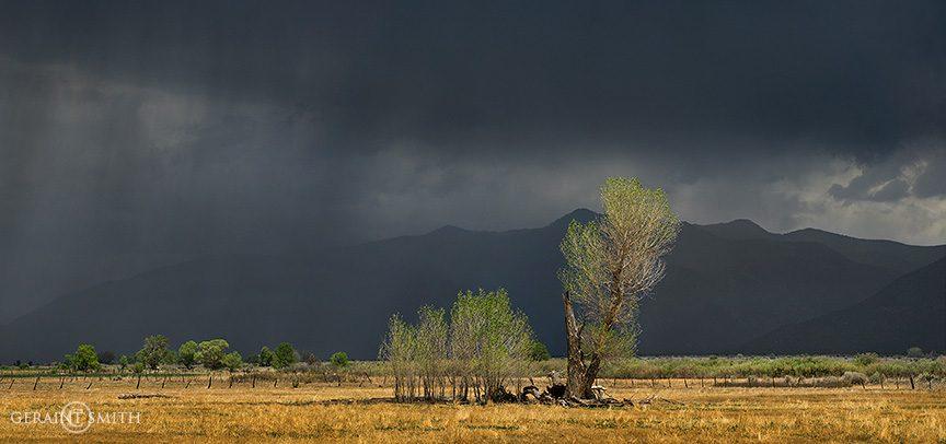 The Meadows, Taos New Mexico