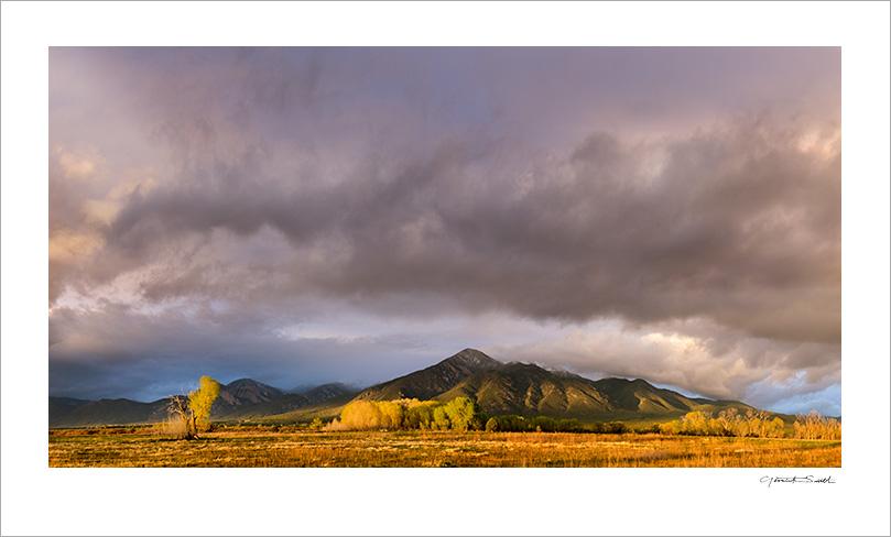 Taos Mountain Mountain Cottonwoods