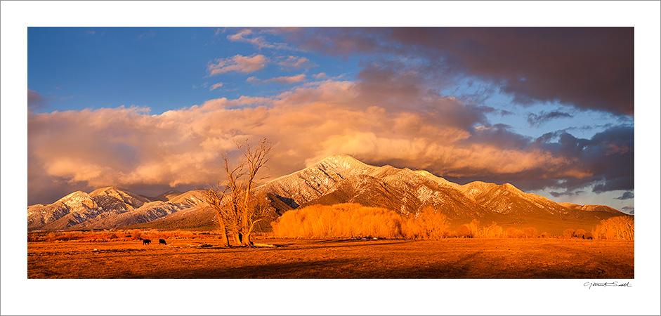 Taos Mountain Sunset Meadows