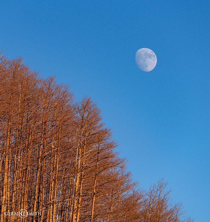 Hopewell Lake Aspen Moonrise