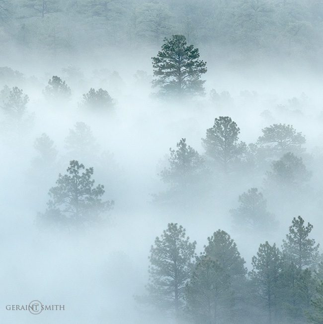 Valley Fog, San Cristobal, NM