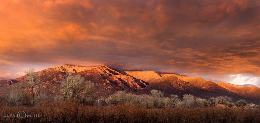 Taos Mountain Cottonwood Willows