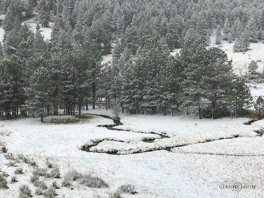 Spring in the Rocky Mountains the Moreno Valley