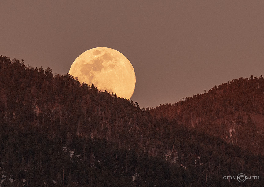 Moonrise in a sienna sky