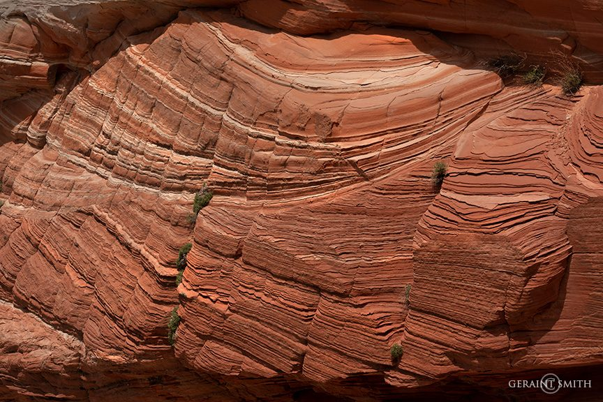 White Pocket Rocks, Arizona