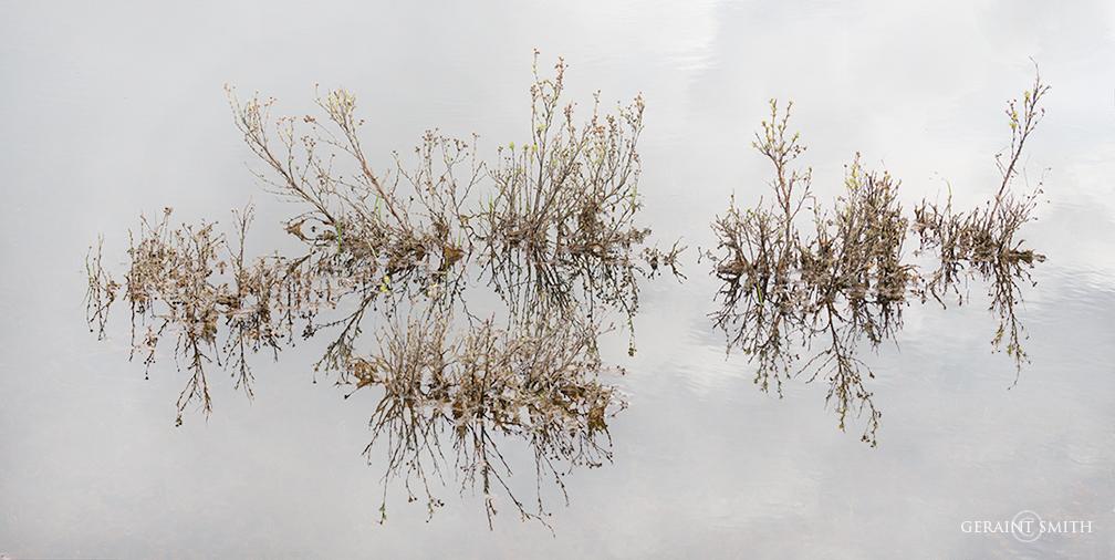 Earth Sky meet in the lake