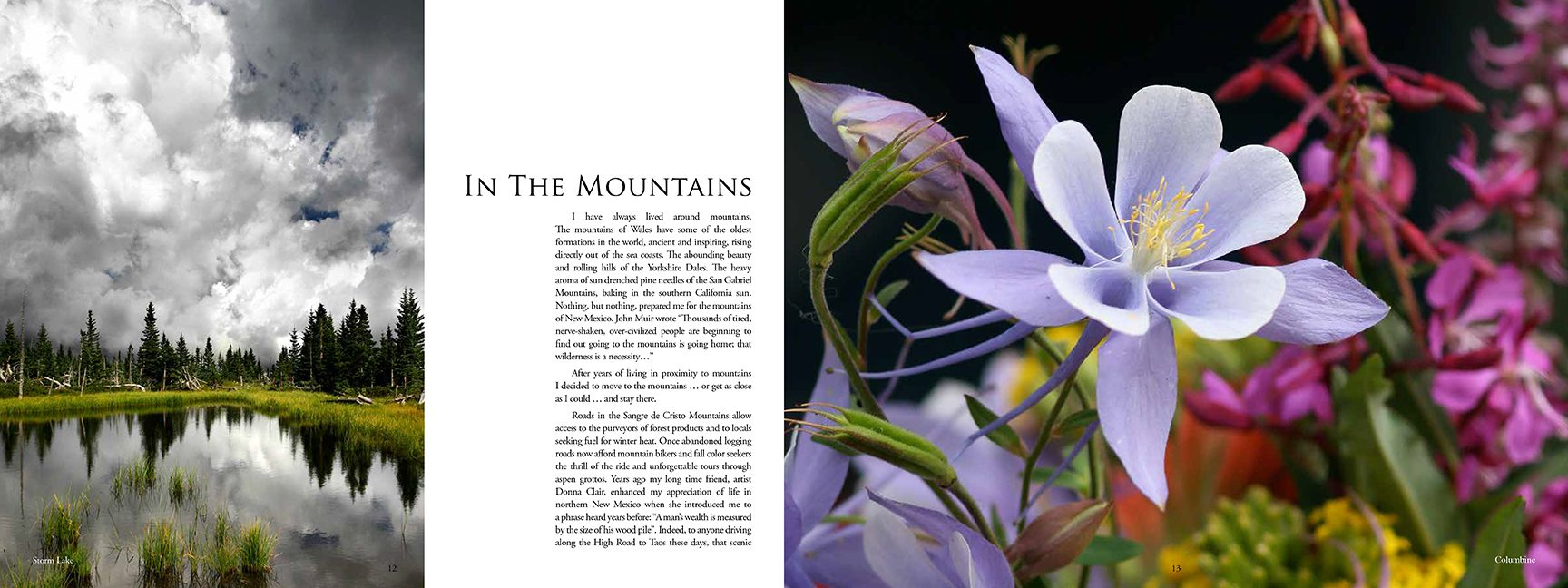 Book pages In the Mountains