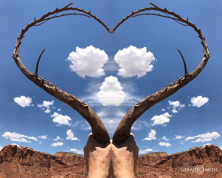 Desert Heart, at Ghost Ranch