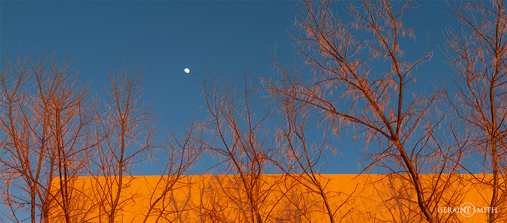Sunset, Moon, Wall and Trees