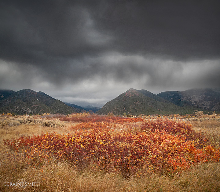 Autumn colors and a storm, northern New Mexico.