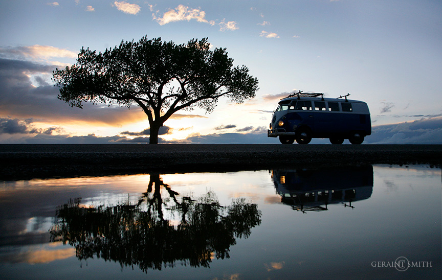 Lone tree sunset VW Bus