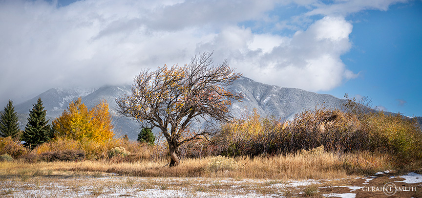 First Snow, Rim Road, Arroyo Seco, NM.