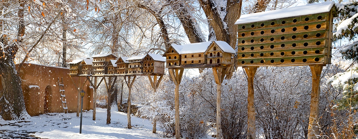 Sites of Taos Mabel Dodge Luhan home dovecots