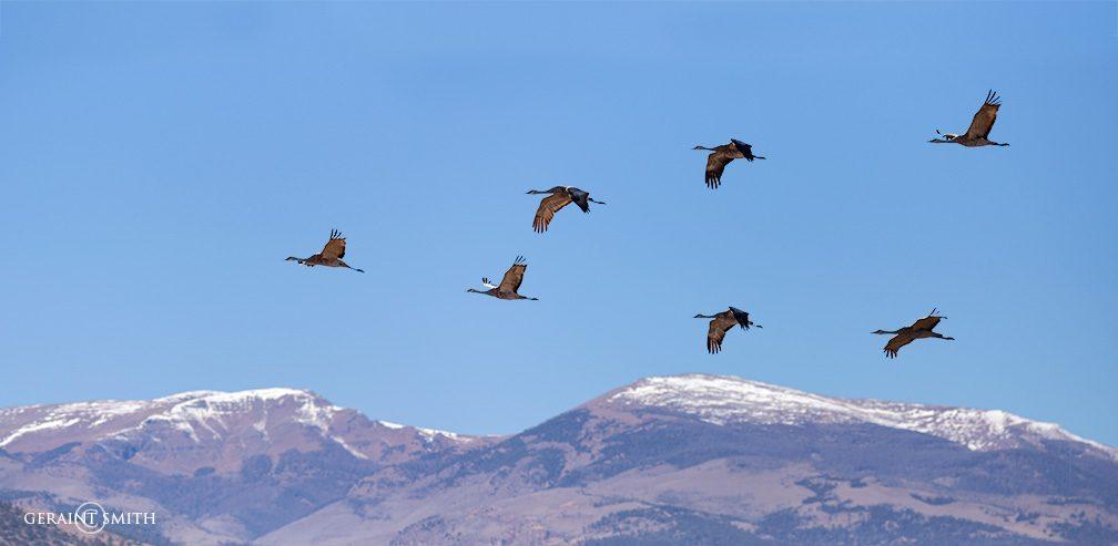 sandhill_mountains_colorado_2598_2599-4933251