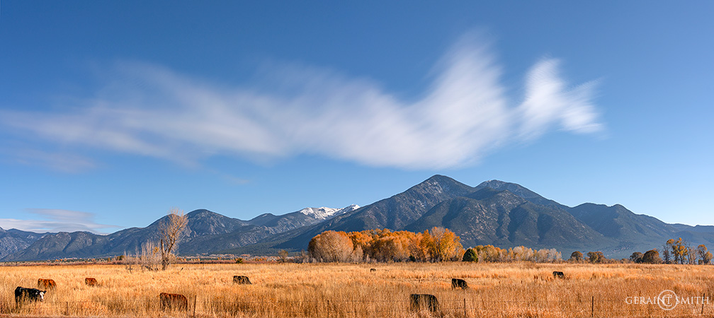 Taos Mountain, Meadow, Wild Cloud