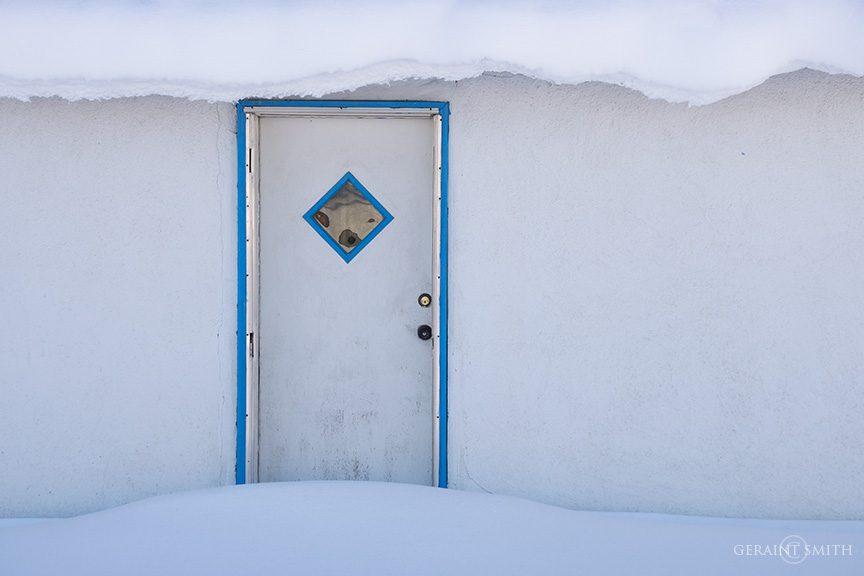 Snow White, Blue, Blanca, Colorado
