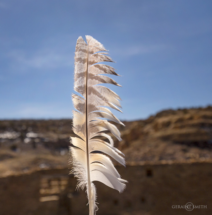 Feather, Casa Rinconada, Chaco Canyon.