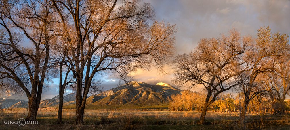 Taos Mountain, Sunset, Trees