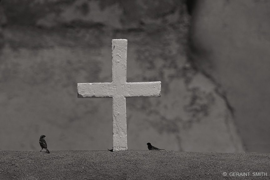 cross_birds_ranchos_de_taos_toned_6463-5990754