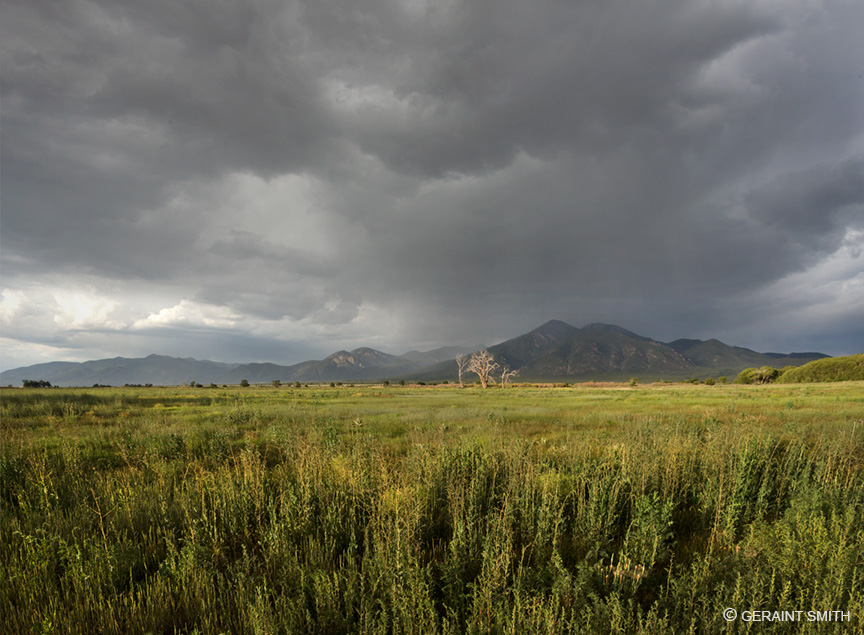 Taos Mountain meadow, storm clouds clearing