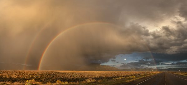 harvest moon rainbow 3541 3546