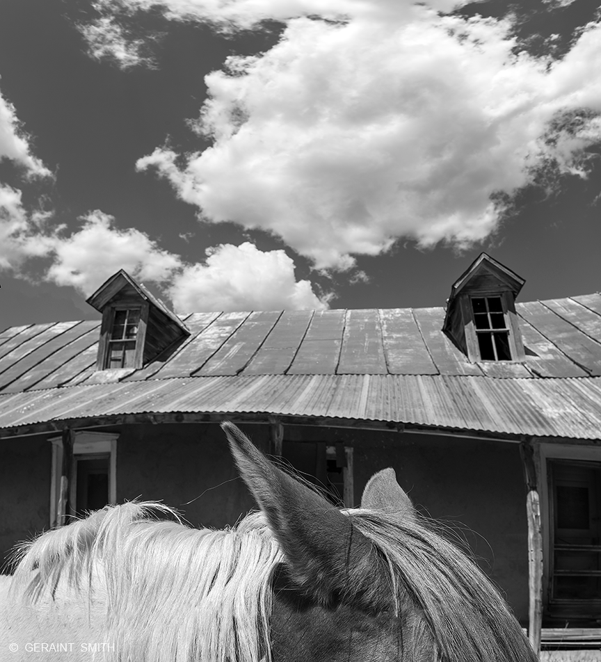 Horse and dormer windows