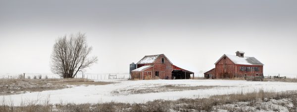 red barns 0197 2000