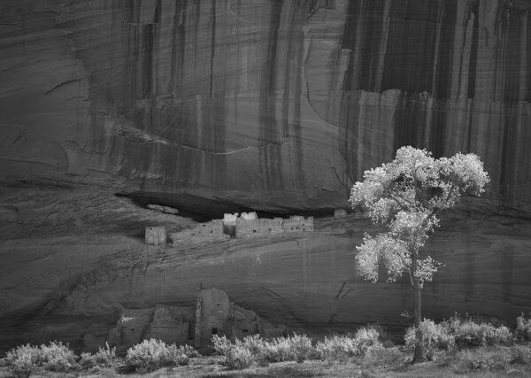 white house ruin canyon de chelly BW 1636 1653